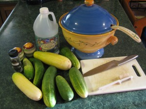 An easy use for all of those harvested cucumbers everyone is sharing.